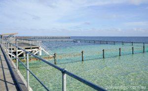 Swimming Moonta Bay